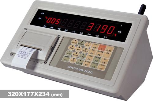 XK3190-H2Bb吊钩秤专用仪表-上海耀华XK3190-H2B