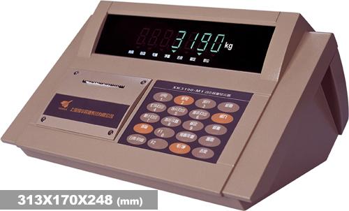 XK3190-DM1汽车衡称重显示器