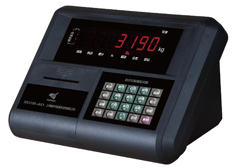 XK3190-AS1