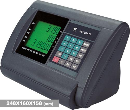 XK3190-A15