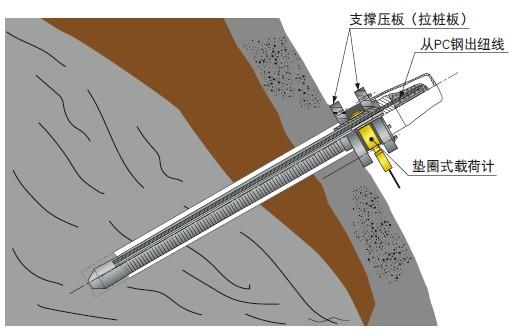 BLW-A垫圈式载荷计_BLW-A称重传感器