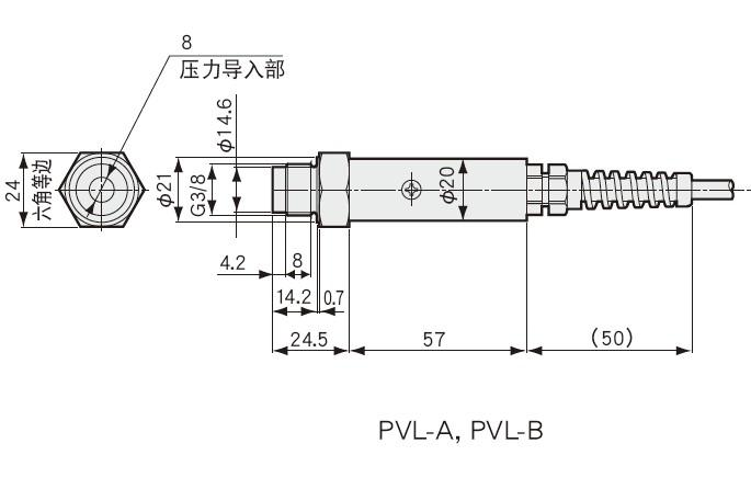 PVL-A, PVL-B