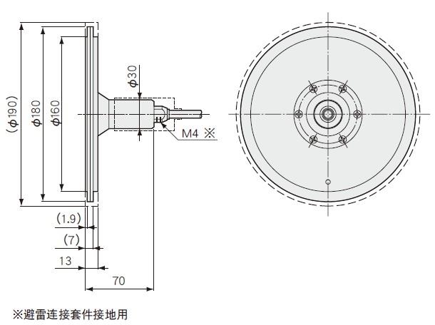 BR-BT应力计-BR-BT传感器