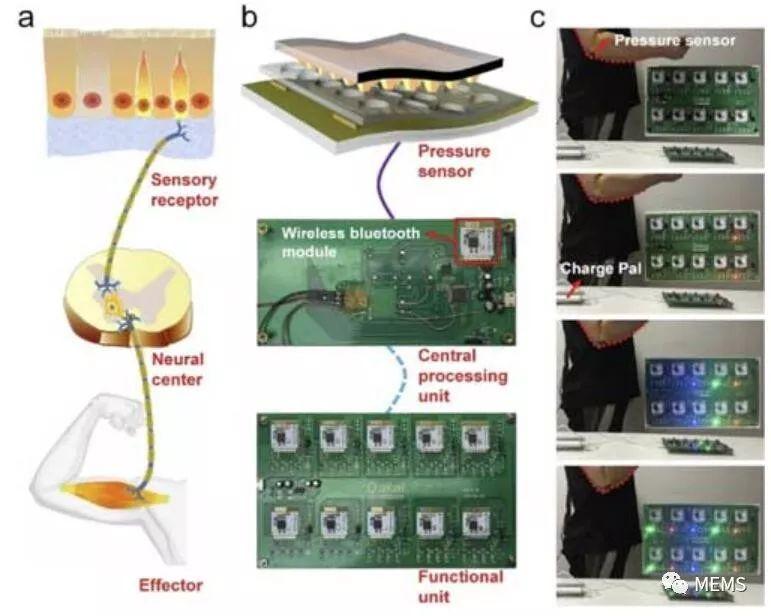 一款柔性压力传感器具有一种高性能、零待机功耗、超高灵敏度、宽线性响应范围
