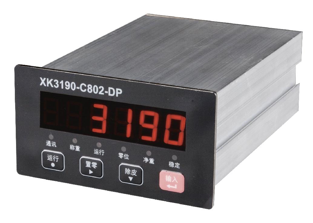 XK3190-C802DP