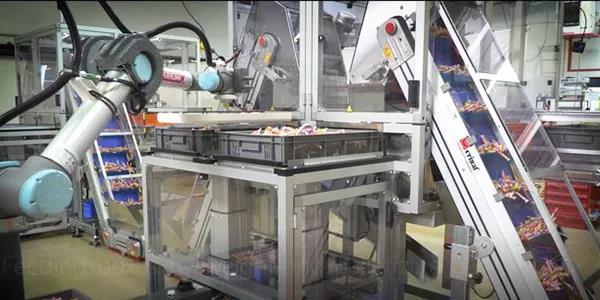Carambar高速包装系统的填充和码垛过程