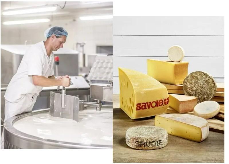 让传统奶酪制造商发扬光大——动态称重解决方案